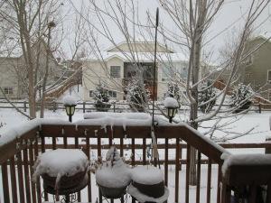 Even more snow.  When will spring come again?